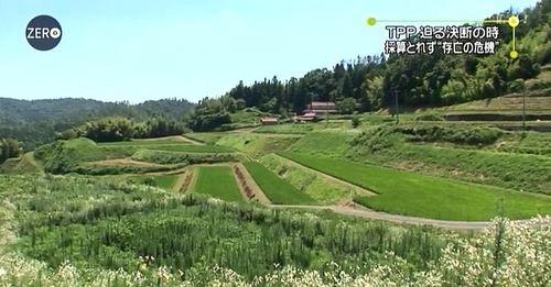 farm(ZERO)01.JPG